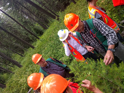 Forest technicians training in northeast Oregon