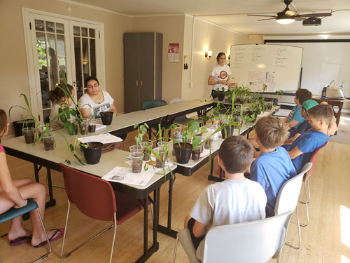 Lane County Junior Master Gardeners participate in a class at the Lae County Extension office in Eugene.