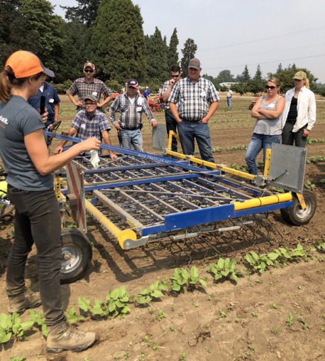 Clare Sullivan teaches growers about mechanical weed removal techniques and demonstrating a precision-tine harrow during the 2018 Cultivation Field Day.