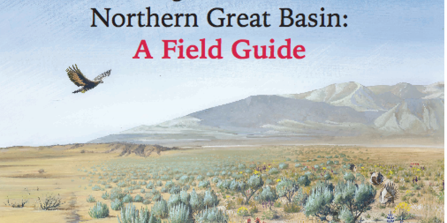 OSU helps create management framework, field guide to