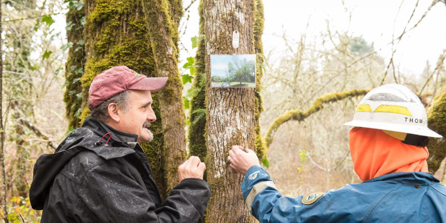 Oregon Forest Pest Detector training in Avery Park in Corvallis.