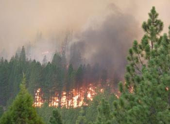 Fire in the Fremont-Winema National Forest