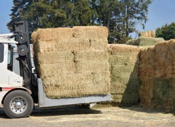 A forklift moves donated hay at the North Willamette Research and Extension Center.